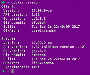 docker version